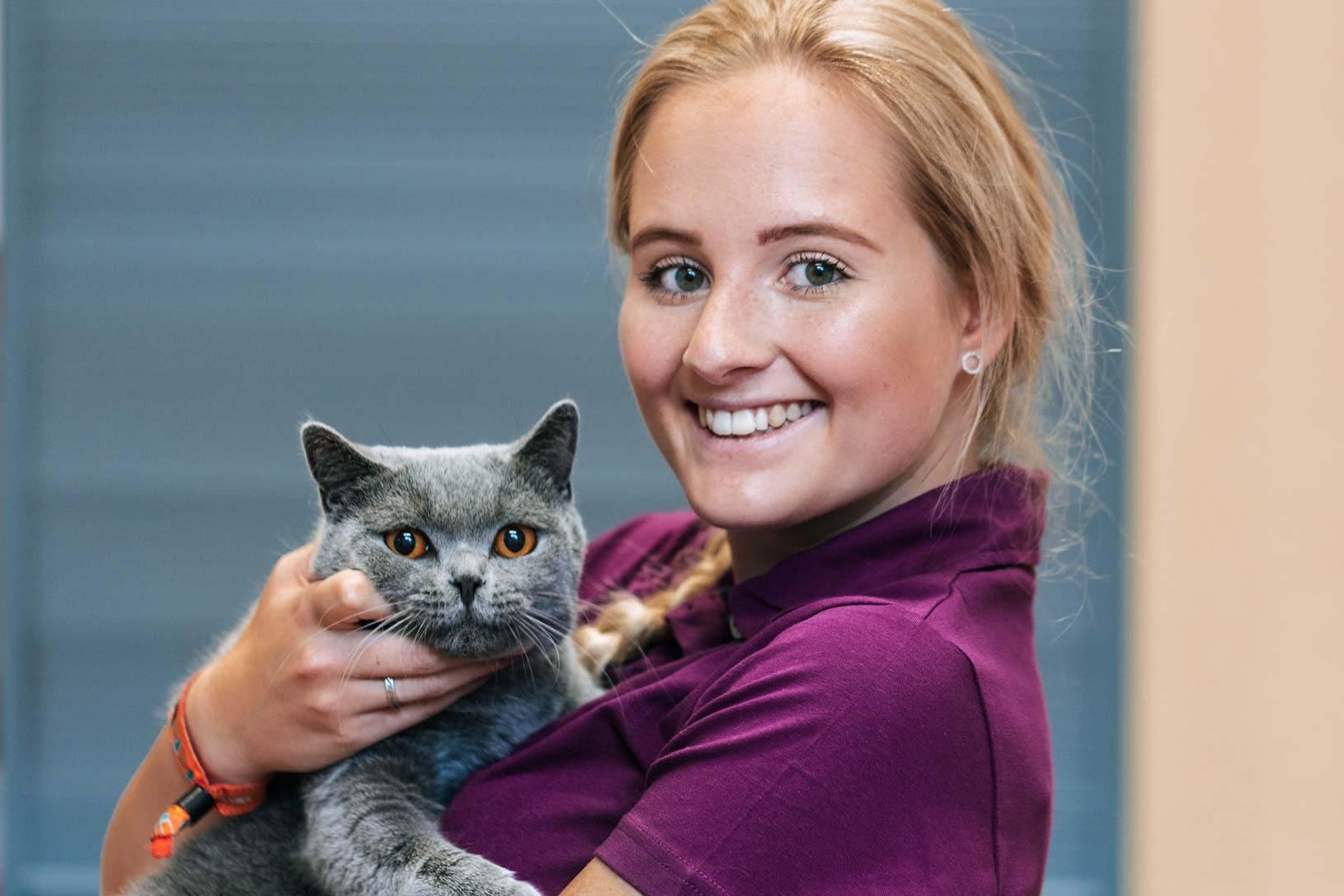Wir suchen dich - Tierarzt am Paulshof