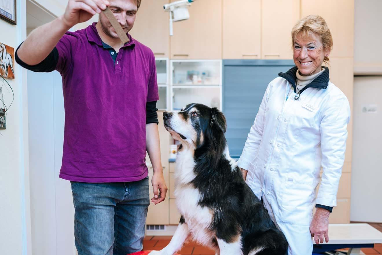 Tierarzt Paulshof – Ernährungsberatung